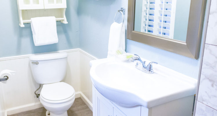 Gull Cottage offers a private bath with shower.